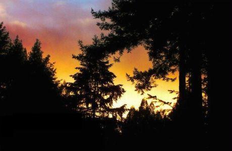 Tao of Sunset